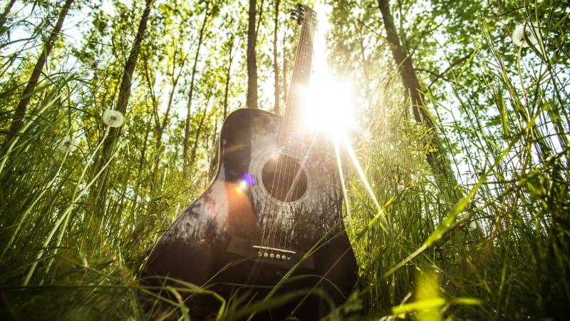 Gitarre Nachhaltigkeit